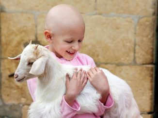 Białaczka limfoblastyczna. Jakie są jej objawy u dzieci?